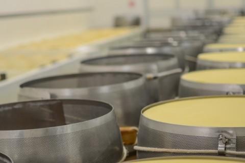 Forme di Parmigiano Reggiano prodotto di montagna nelle fasce d'acciaio